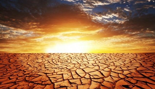 Под ударом продовольственная безопасность: эксперты – об изменениях климата