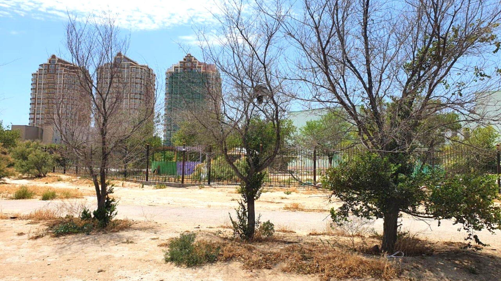 Акимат Актау назвал причины плохого ухода за деревьями