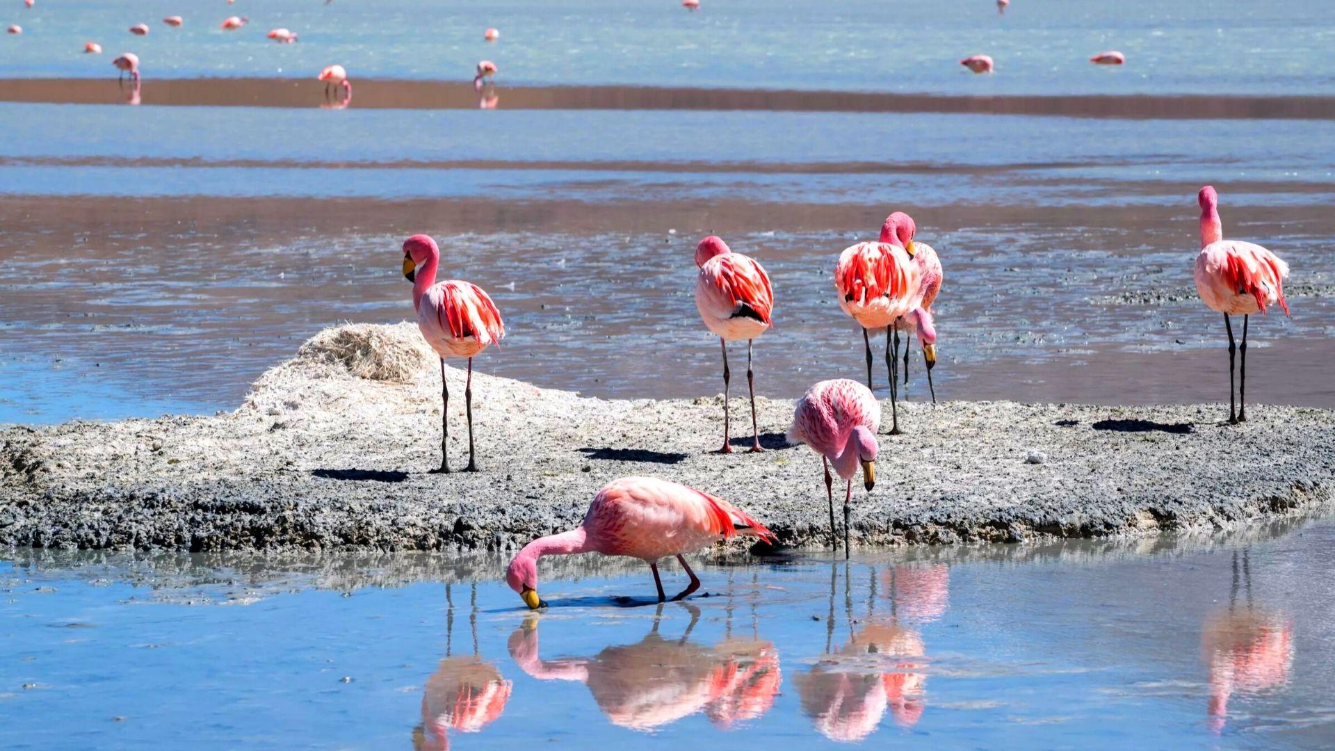 Озеро Караколь: задача - сохранять и развивать